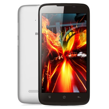 BlackView Zeta V16 Smartphone 5.0 Inch HD MTK6592M Octa Core Android 4.4 1GB 8GB White