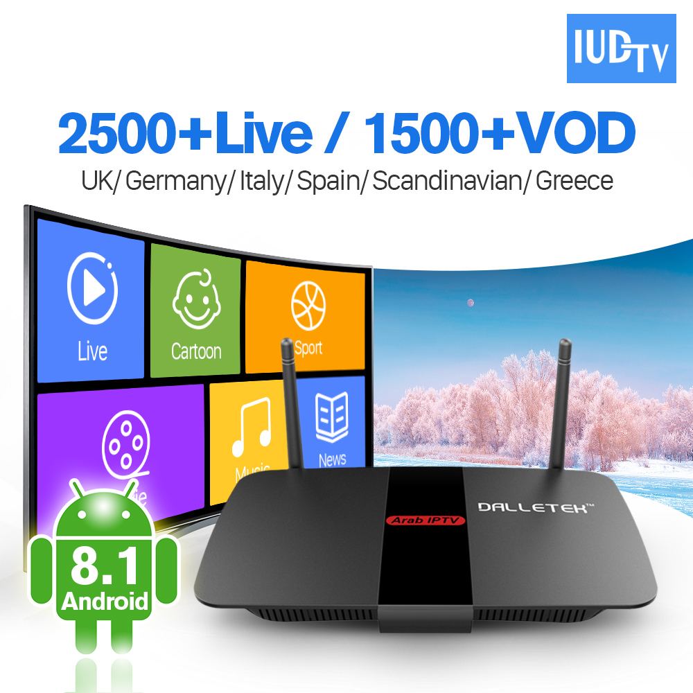 Sweden IPTV Subscription IUDTV Account Android 8.1 Smart TV Top Box Quad Core RK3229 IPTV Europe Sweden Italy Spain UK IPTV Box